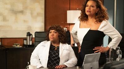 Calendrier Diffusion Greys Anatomy Saison 12.Grey S Anatomy 15x25 Jump Into The Fog Series Addict